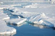 Arktisches Meereis Foto: Dirk Notz, MPI für Meteorologie