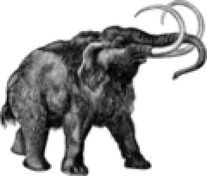 Serbien: Mammut-Friedhof in Kohlemine entdeckt