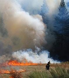 Yosemite Valley Fire