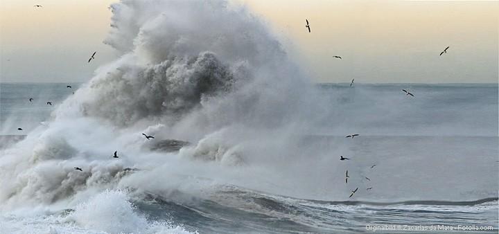 Wetterwarnung: Auf Seegebiet werden hohe Wellen erwartet