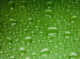 Regen Wasser Tropfen